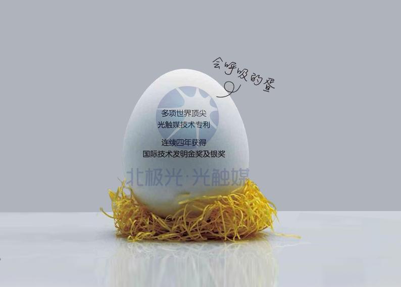 北极光·光触媒空气净化蛋